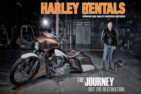 Harley Rentals